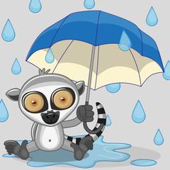 Lemur with umbrella