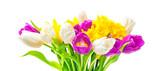 Osterglocken, Tulpen, Osterstrauß