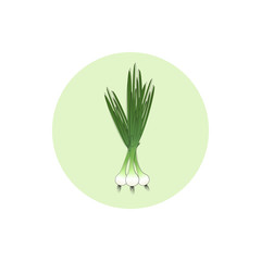 Icon green onion,vector illustration