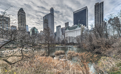 Central Park, New York City in wonter