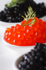 red and black caviar in spoon macro. vertical