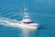 White Cabin Cruiser Over Blue Water