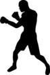 Boxer Silhouette - 77993481