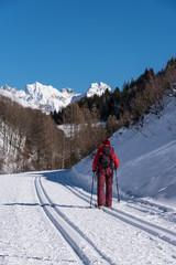 Langläufer mit verschneiten Bergen im Hintergrund