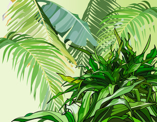 green leaves of tropical plants