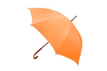 umbrella on white