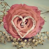 Fototapety Grußkarte - Rosenblüte mit Herz - nostalgisch