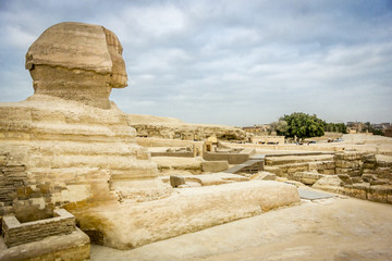 The Sphinx looking out towards Giza, Egypt
