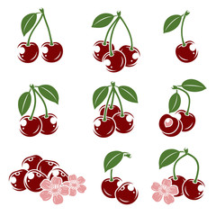 cherry set. Vector