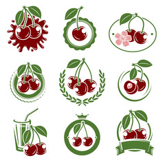 cherry label and icons set. Vector