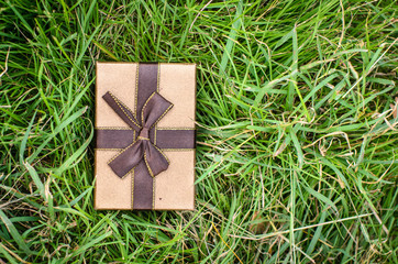 Brown gift box on green grass outdoor.