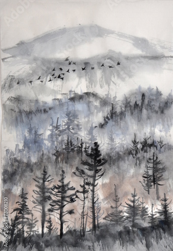 Misty pine forest - 78008210