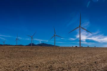 Windparkanlage zur nachhaltigen Energiegewinnung