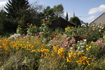 Blumengarten in Alverdissen
