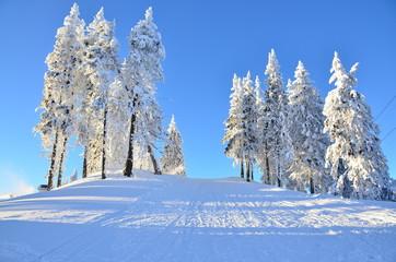 Ski slope in Poiana Brasov Romania on mountain