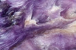 canvas print picture - Lilac rare crystal. Macro.