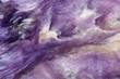 Lilac rare crystal. Macro. - 78012071