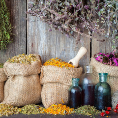 Healing herbs in hessian bags and bottles of essential oil or ti