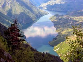 Tara mountain in Serbia