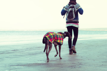 Unrecognisable hipster girl walking her dog on the beach.