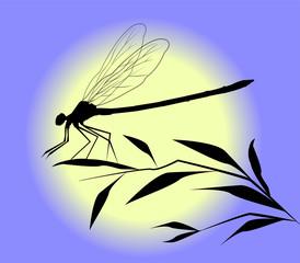 silhouette di libellula