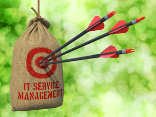 IT Service Management - Arrows Hit in Red Target.