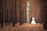 bride groom are walking in the woods at the wedding