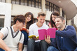 Happy  young group of students study together