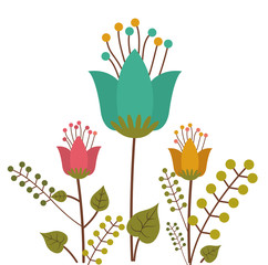 Flowers design ,vector illustration.