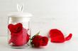 Obrazy na płótnie, fototapety, zdjęcia, fotoobrazy drukowane : Rose flower in glass jar on light background