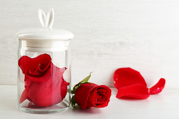 Rose flower in glass jar on light background