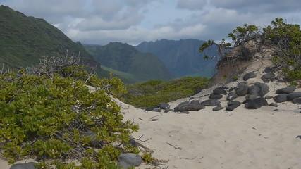 Island dune point Keana, Oahu Hawaii
