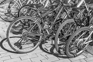 Group of bicycle rear wheels with tire shadow