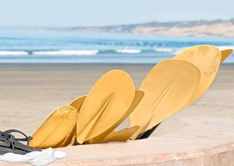 Group of sandy yellow kayak paddles at the beach
