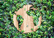 Eco concept :Wood texture world icon on green leaves wall - 78028293