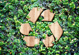 Eco concept :Wood texture Recycle icon on green leaves wall - 78028280