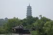 canvas print picture - Yangzhou