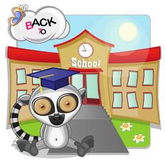 Lemur and school