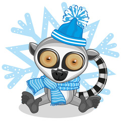 Lemur in a hat