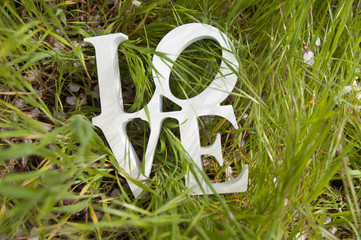 Word LOVE in the green valley