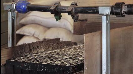 Conveyors, workers hands, crumb