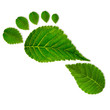 Leinwanddruck Bild - Eco footprint