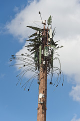 palm tropical communication antenna