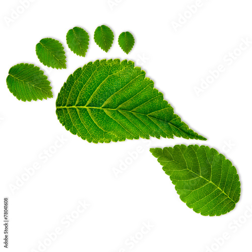 Leinwanddruck Bild Eco footprint
