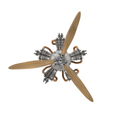 aircraft engine with propeller