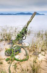 Esqueleto de barco en la playa del Regaton 02