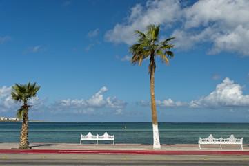 tropical mexican paradise beach in Baja California