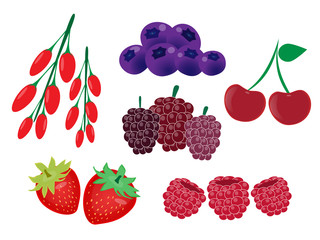 Healthy food,berry fruits vector set