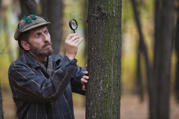Man detective with a beard examines a tree trunk