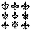 Royal Lily Symbol - 78051035